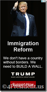donald trump 040216 blogad 300x600 4Presiident immigration