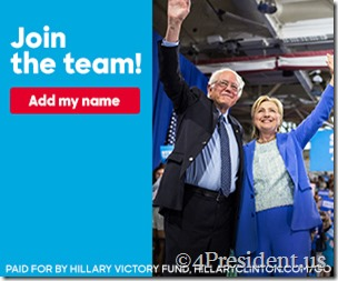 Bernie_HRC-300x250-3